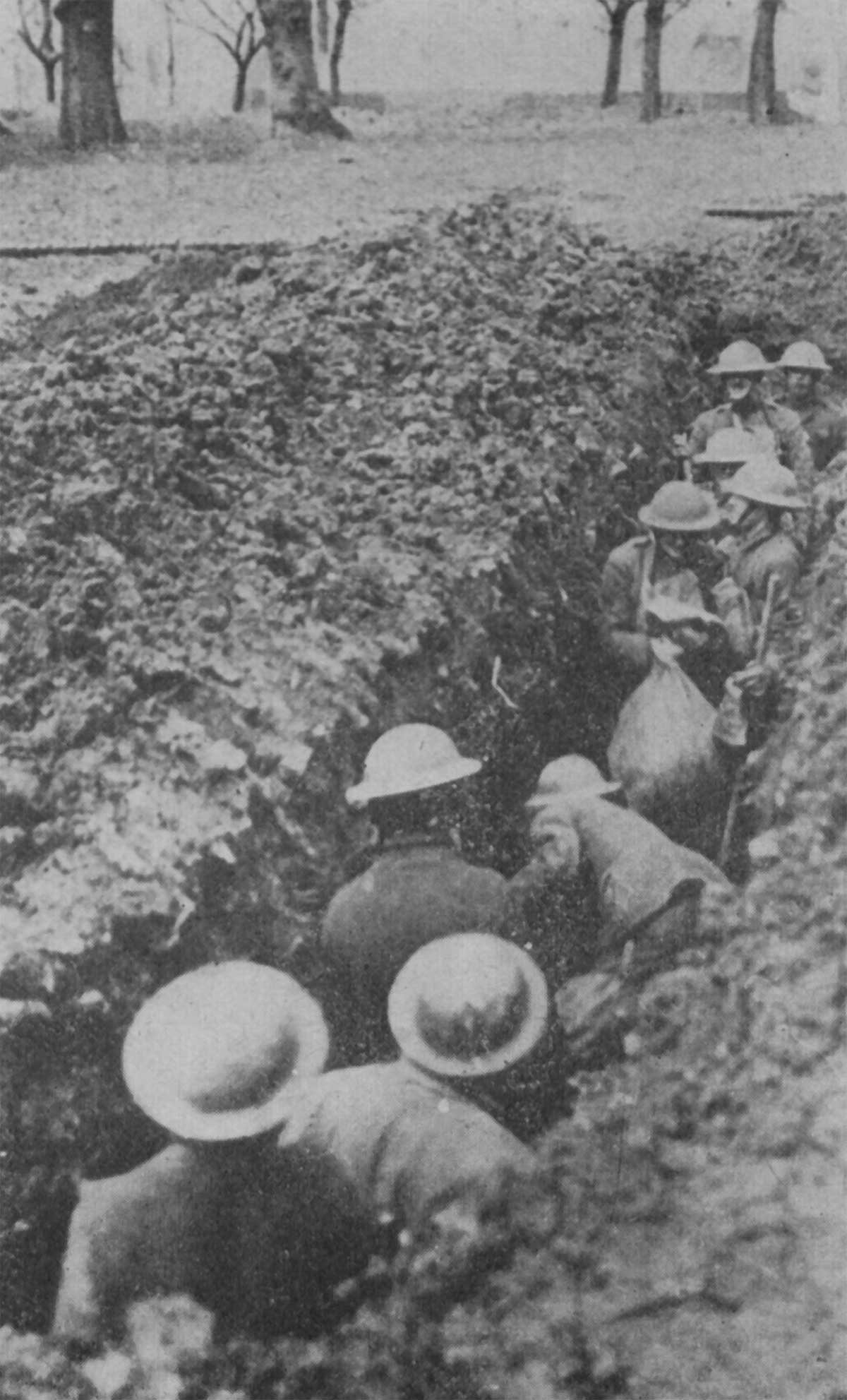 Trench Construction In World War I Diana Overbey Wwi Diagram Entrenching