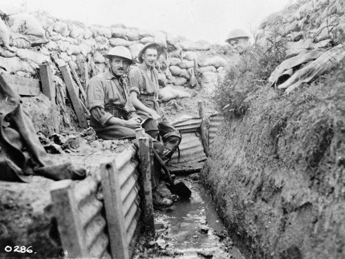 life in the trenches A worksheet explaining what life was like in the trenches save 70% on this worksheet when you buy the world war 1 worksheet superpack get this worksheet and 38.